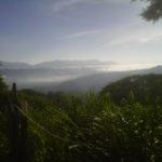 Selva Lacandona, Chiapas, México